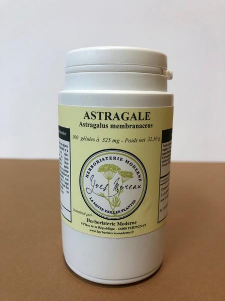 Plante Astragale : Comparatif - Plante - Indications |  Quels sont les bénéfices