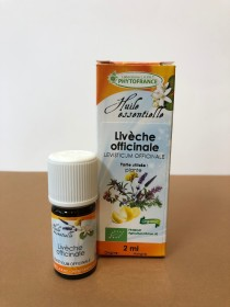 livèche officinale